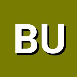 burSSa